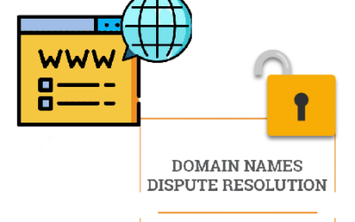 Domain Name Disputes And Resolution Systems